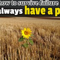 how to survive failure always have a plan